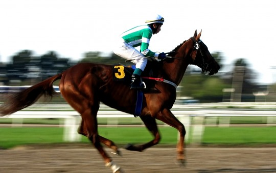 HORSE RACING IN ARGENTINA